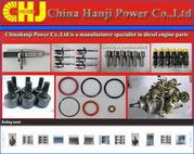 Repair Kit VE pump parts 800320